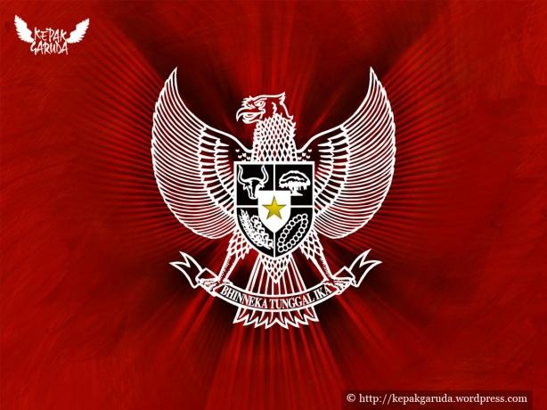David Tobing Gugat Kostum Tim Nasional  UpayFan Aquilan